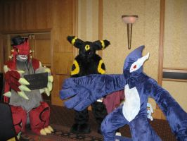 RMFC2011 Pokemon at the Parade by Leap207