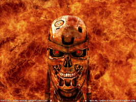 T2 Endoskull fire wallpaper by Pencilshade