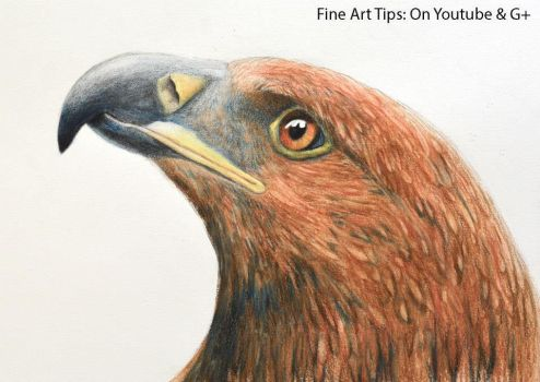 How to Draw an Eagle's Head With Watercolor Pencil by ArtistLeonardo