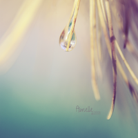 before I fall down by Aimelle