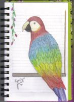 Parrot by kriona