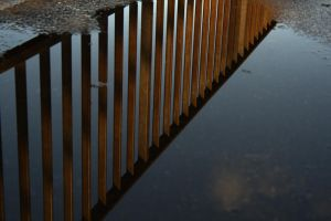 puddle picture by Picture-Bandit