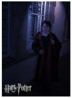 Harry Potter - Inside my mind by HyperLittleNori