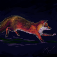 Red Fox II by LennyThynn