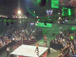WWE RAW '08 by Suko-Aida0326