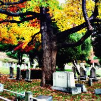 Cemetery by incolor16