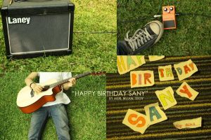 happy birthday sany by titoyusuf