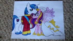 MLP: Shining Armor and Princess Cadance by LizDraws