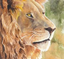 Lion by Elzux