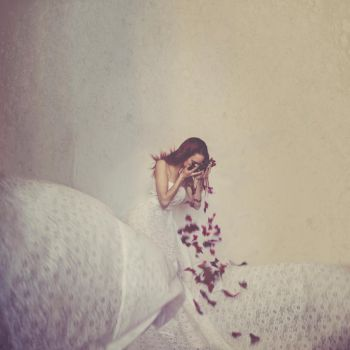 The Butterfly Tears by Xcetera