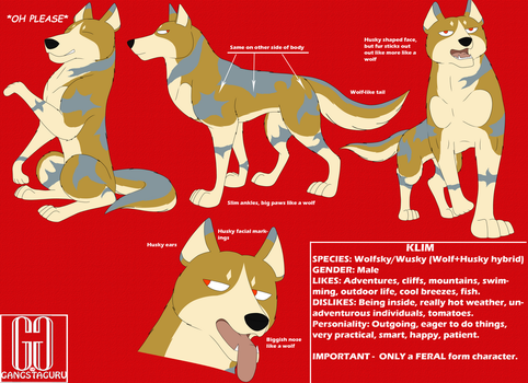 Klim Reference Sheet by gangstaguru