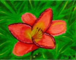 My first Painted Day Lily by SlifofinaDragon