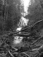 B and W waterfall by Starleaf-Creations