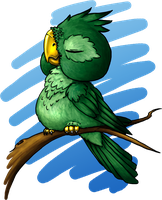 Poofy Parrot by Ciarra