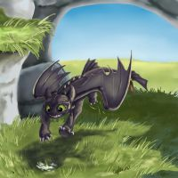 Toothless: ITS SHINY by SilverFlight