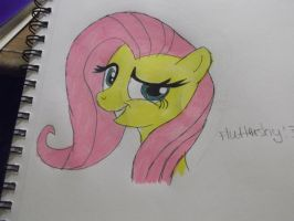 fluttershy by LaTigressa1