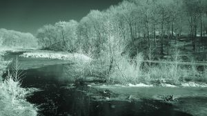 Green Ribbon Trail  Scene (IR) by RuralCrossroads360