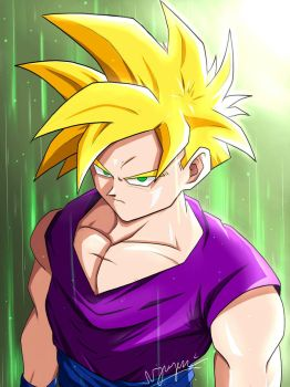 Teen Gohan Finished by nguyen619