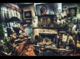 The Room I HDR by ISIK5