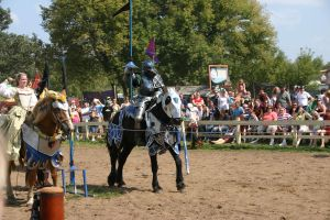 Jousting - Charge 5 by Furaha015