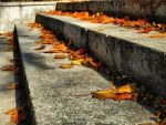Autumn Stairs by waclawq
