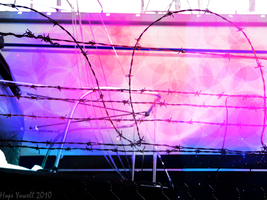 Acid and Barbwire by HopeHavoc