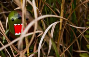 High grass hiding! by PiliBilli