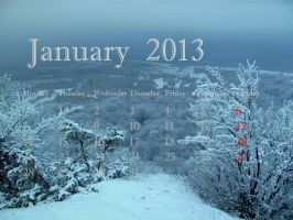 January 2013 by Goppo713