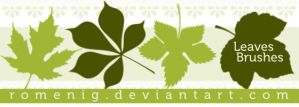 Leaves Brush Set by Romenig