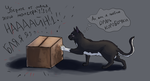 Cats LOVE boxes by AntharesMK