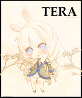 TERA- priest by SweetieMoon