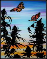 cannabis butterflies by erikhoogen