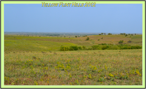 Yellow Flinthill Fall 2012 by Taures-15
