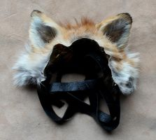New Ears - 1-27-15 by lupagreenwolf