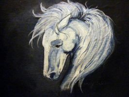 Shadowfax by Reenin