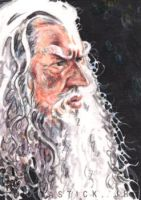 Gandalf PSC by tdastick