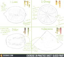Exercise 39 Practice Sheet: Sliced Fruit by CGCookie