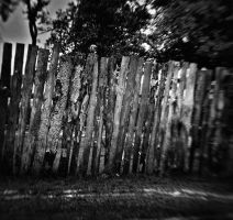 life of the fence VIII by psdlights