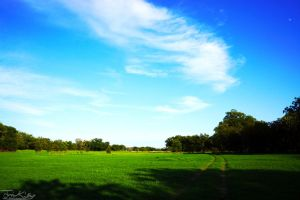 Texas Country Side by JKase911