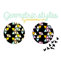 +Geometric styles by seredirectioner