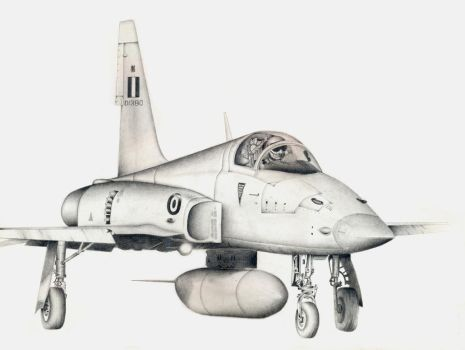 HAF NF-5 Freedom Fighter by giannisk