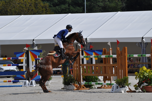 Show Jumping Stock 015 by Champi-Stock