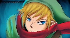 Link Skyward Sword by leontakase