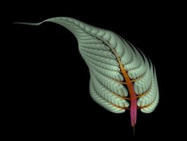 Apophysis Spring Fern Frond by Gibson125