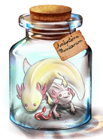 Axolotls in a bottle by FuriarossaAndMimma