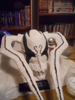 Vasto Lorde Ichigo mask by Wingeddeath243