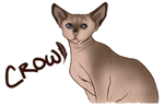 Crowfoot RP Tracker + Relationships *NEW PLOTS* by theredjennies