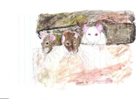 Troublesome Trio-Painting by Ratstien