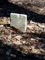 Headstones : 19 by taeliac-stock