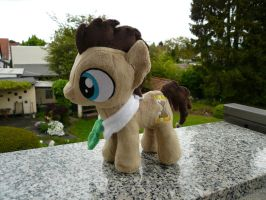 Dr Whooves (Colt) Plushie by navkaze
